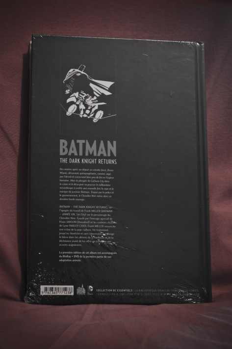 Dark Knight Returns 02