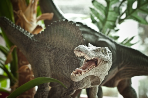 Dinosaures 03