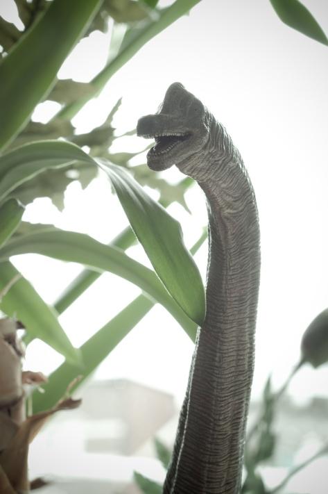 Dinosaures 04