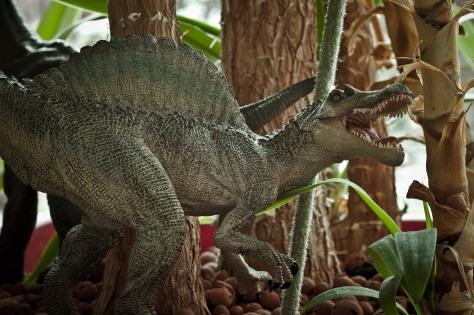 Dinosaures 05