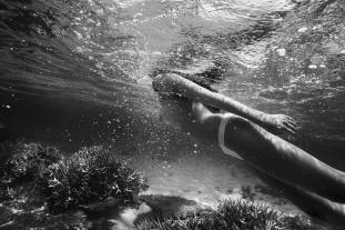 """Paul Giggle """"Natural Wonders"""""""