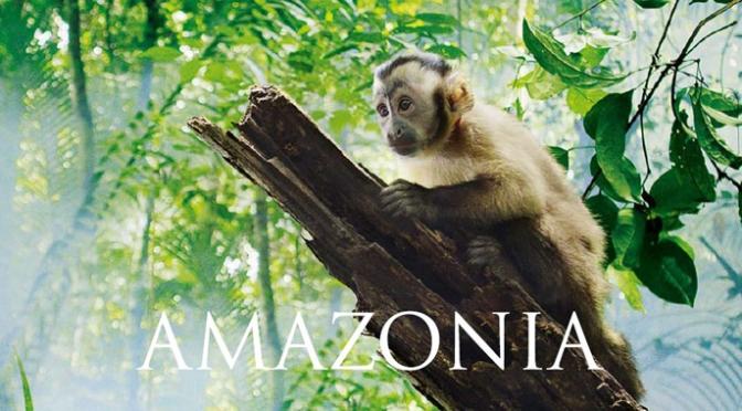 Mon avis express sur Amazonia de Thierry Ragobert