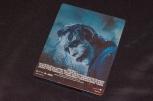 Steelbooks Trilogie The Dark Knight (7)