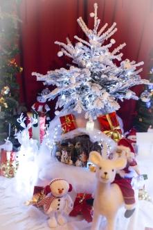 Noël 2014 (3)